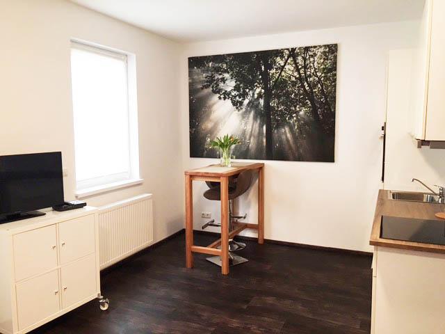 Studio Apartment - Frankfurt am Main
