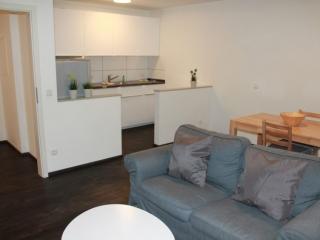 Furnished Apartment in Frankfurt am Main Germany