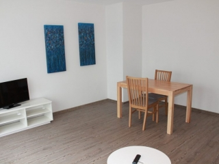 apartment frankfurt available for rent